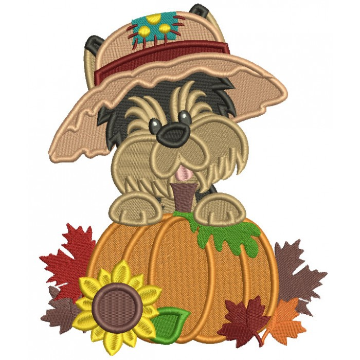 Cute Little Dog Wearing Hat Next To Pumpkin Fall Filled Thanksgiving Machine Embroidery Design Digitized Pattern