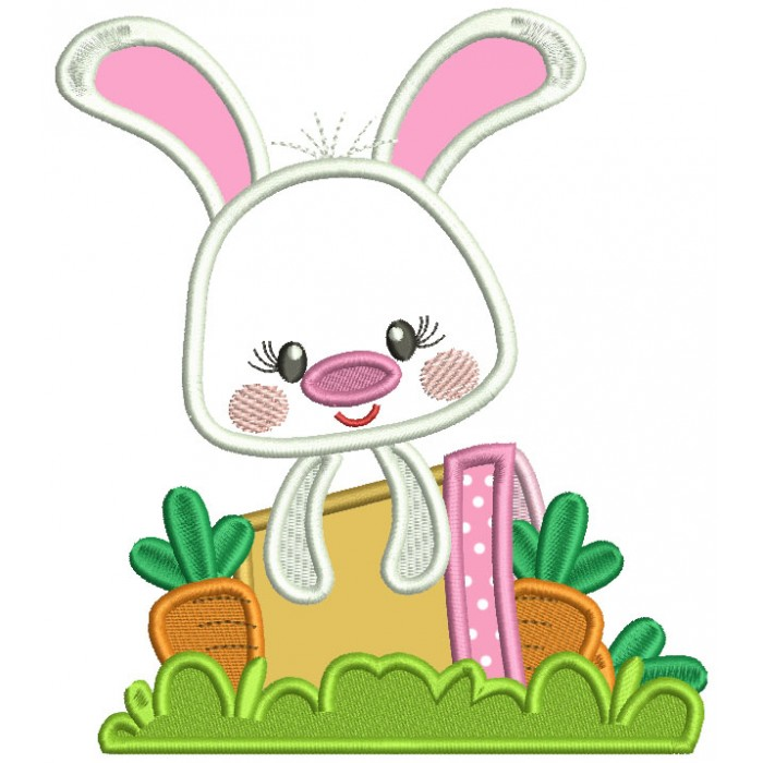 Cute Bunny With Flower Pot Applique Easter Machine Embroidery Design Digitized Pattern