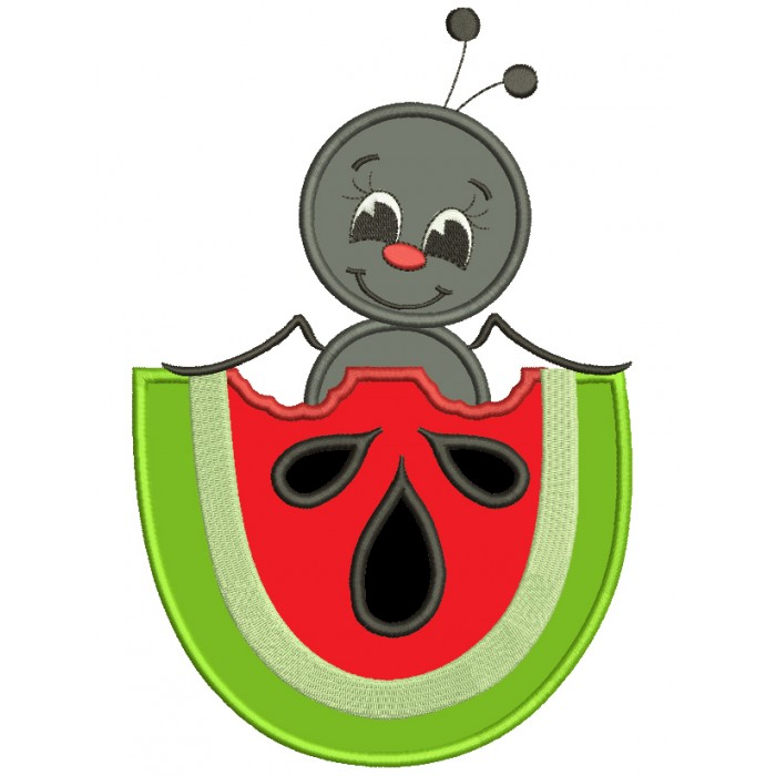 Cute Ant Inside Watermelon Insect Applique Machine Embroidery Digitized Design Pattern