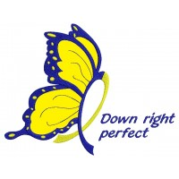 Down Right Butterfly Down Syndrome Awareness Applique Machine Embroidery Digitized Design Pattern